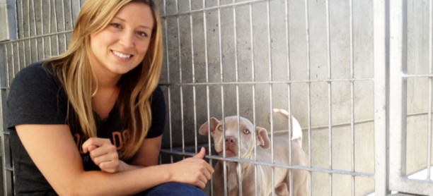 A Brief History of Dog Rescue: How People Started Saving Man's Best Friend