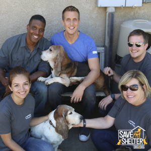 Rocky and volunteers at Basset Hound Rescue